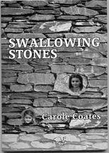 Swallowing Stones book cover